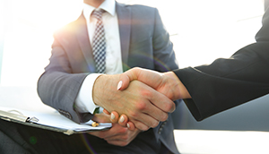 Business people shaking hands cropped